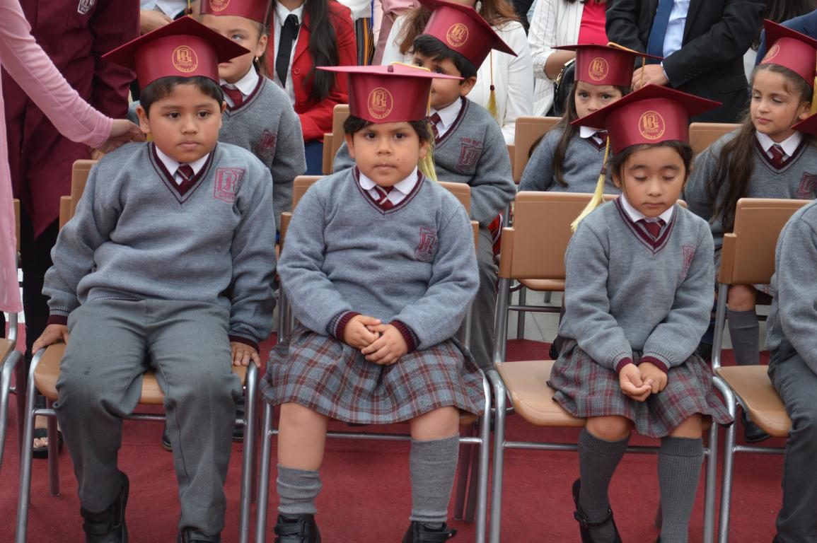 LICENCIATURA KINDER